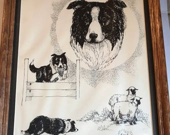 Border Collie Artwork