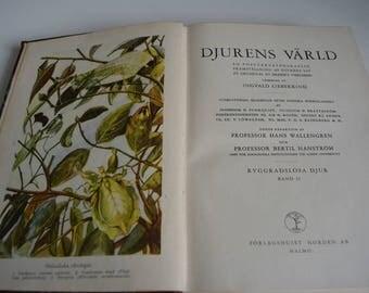 Vintage animal book Djurens Värld: RYGGRADSLÖSA DJUR. Volume 2, Insekter.  Dear child, Ingvald Svensk Uppslagsbok off. 1939th in Swedish.