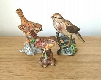Vintage Bird Collection Thrush Bird Figurine Ceramic Birds  Wildlife chicadee-Garden Room Decor collectable Birds