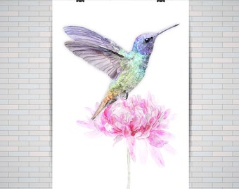 Humming Bird Print, Watercolor Humming Bird And Flower : Premium Quality Poster / Print A2 / A3 (no frame)
