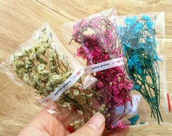 3 bag cute mini dried flower Crystal flower, can fill in the glass vial , home decorations preserved fresh flower real dried flowers