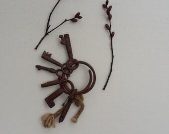 Vintage Rusty Victorian Keys Miniature Keys