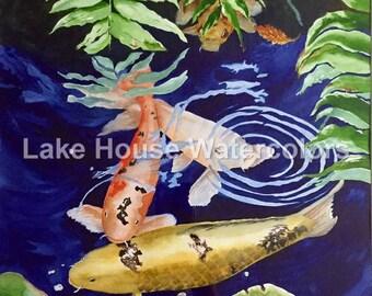 Koi pond, fish, colorful fish, Japanese Koi