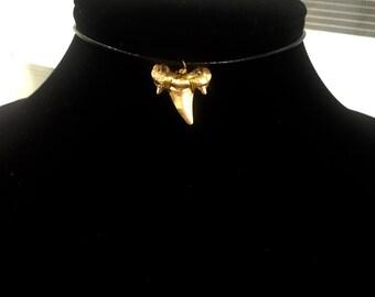 Gold Shark Tooth Choker