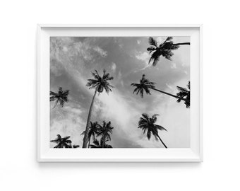 Palm Trees, Black and White Palms, Beach House Decor, Nature Photography, Palm Trees Art, Printable Art, California Art, Nordic Decor
