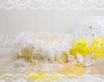 Newborn Digital Backdrop (chick/yellow/feather)
