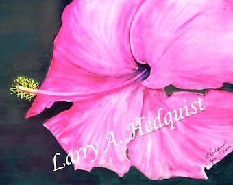 Hibiscus (LAH #050, Original Watercolor Painting)