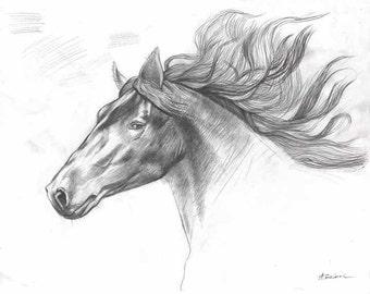 Print of ORIGINAL HORSE DRAWING, horse head drawing, pencil drawing, pencil sketch print, horse head print, drawing prints, giclee art print