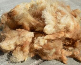 California Red Sheep Fiber - Raw, 2.5 ounces