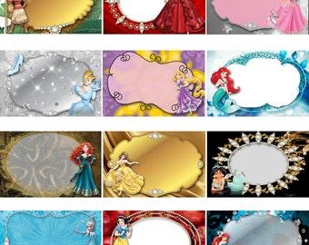 Disney Princess Digital 4x6 Autograph Book