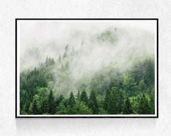 Landscape Print, Pine Forest Print, Nature Wall Art, Landscape Print, Mountains Photography Printable Art