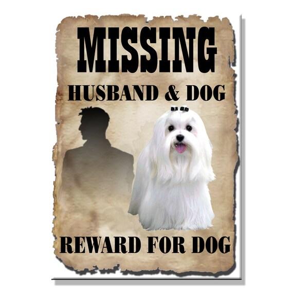 Maltese Husband Missing Reward Fridge Magnet