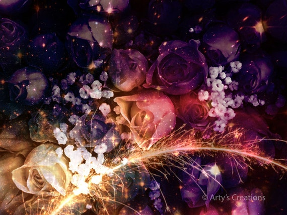 Fireworks of Purple Roses - Original Color Photo Print
