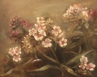 Pink Phlox Floral, Flower, Original  Oil Painting