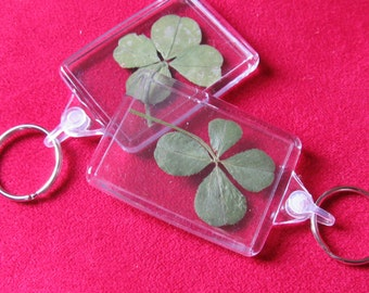Valentine's day: Keychain with a real clover 4-leaf lucky