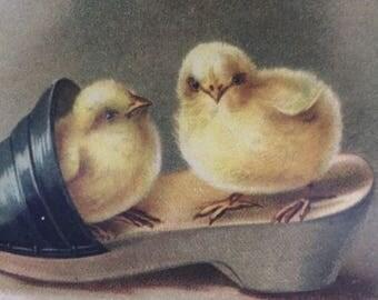 Easter Vintage Card, Easter Chicks Card, Chicks in Shoe Card