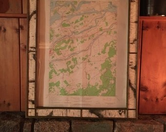 Adirondack Birch Bark frame