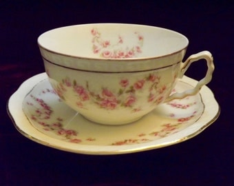 ZEH SCHERZER C0., Antique Teacup, Z S & Co., Bavaria Germany, Pattern ORLEANS 508, Collector Teacup early 1900's, Rehau Bavaria Germany