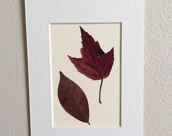 Pressed Flower Wall Hanging