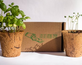 Indoor Herb Garden Kit (3 Pack) By Earth Safe Gardening Company | Basil,