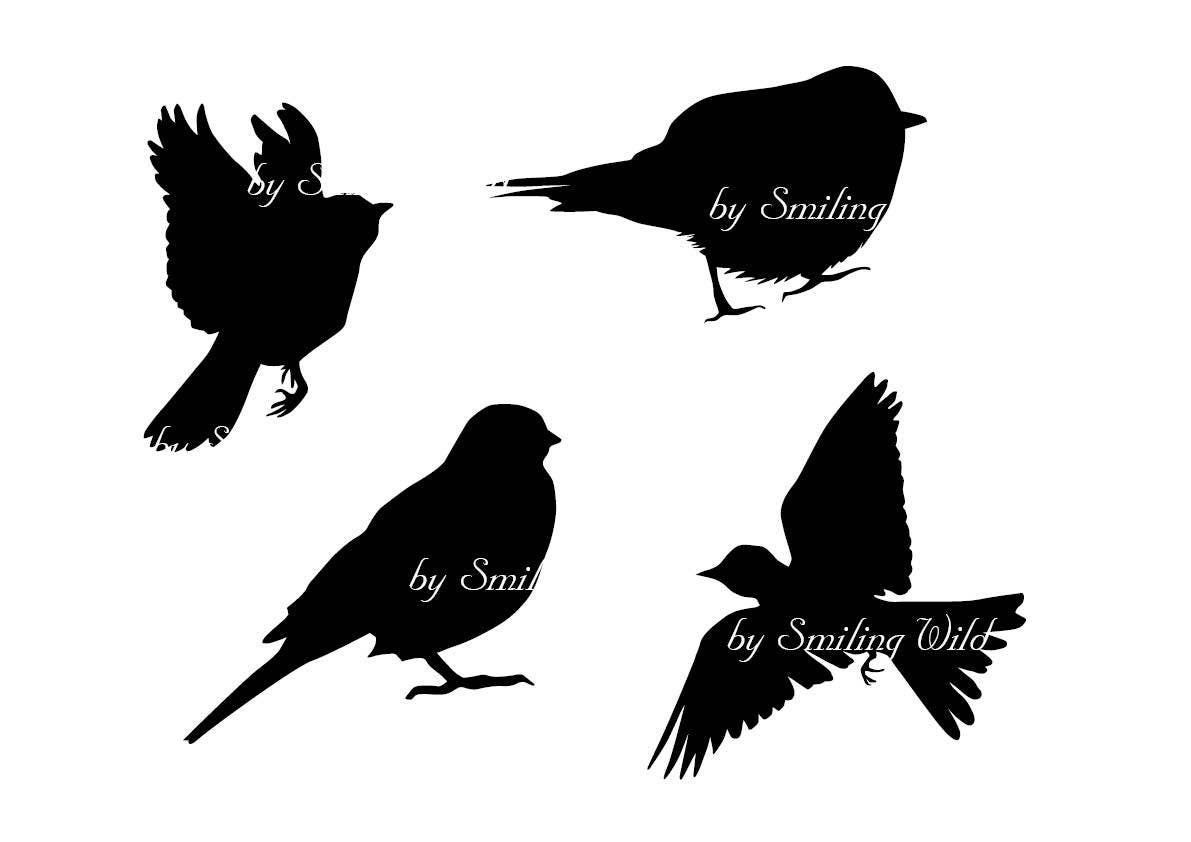 flying bird svg clipart silhouette songbirds silhouettes ...
