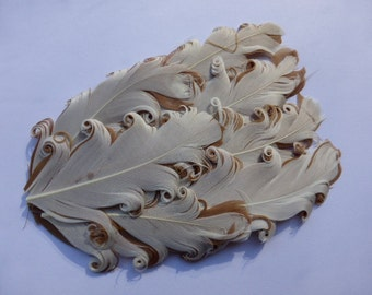 feather pad - cappaccino coloured