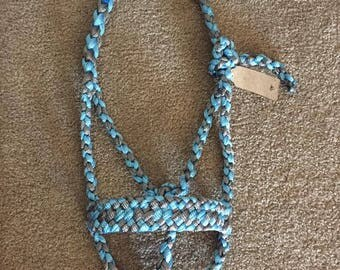 2 Colored Mule Tape Halter