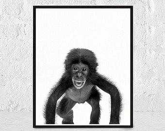Monkey Nursery Art, Monkey Art Print, Illustrated Monkey, Monkey Prints, Jungle Wall Art, Nursery Decor, Cute Monkey, Nursery Wall Art