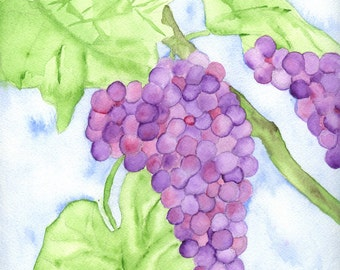 Grapes on a Vine an original watercolor painting on paper