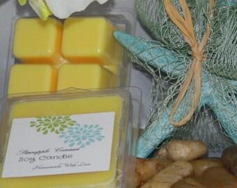 Pineapple Coconut Soy Wax Tea Lights
