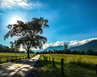 Scenic view in Cades Cove, Smoky Mountains