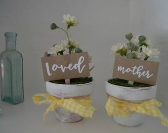 Mini Clay Pot with White Asters, Mother's Day Gift, Decor