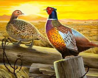 Pheasants perched on a fence Art print poster