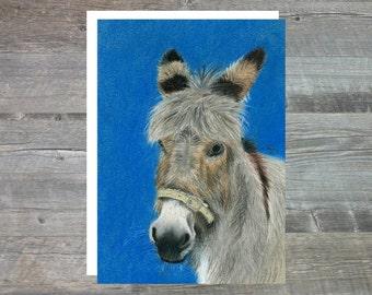 Mo THe Donkey