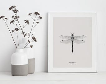 Dragonfly Print, Black and White, Insect Print, Anisoptera, Minimal Print, Wall Art, Scandinavian Design, Instant Download, Nordic Design