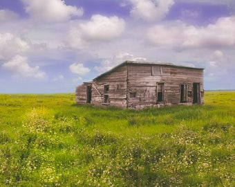 Digital Background Shack in the Valley