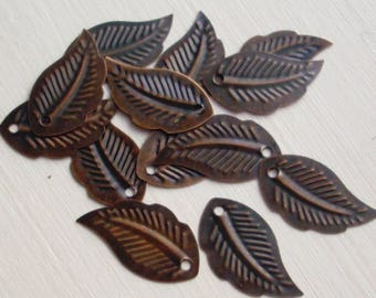 Antique Copper Leaf Stamping Charms, Curved Tropical Leaf, 20