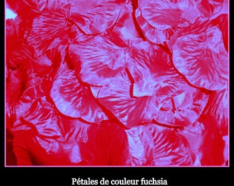 100 to 1000 fuchsia rose petals wedding decoration, with a diameter of 5 cm, will result in a variety of 20 sparkling colors: