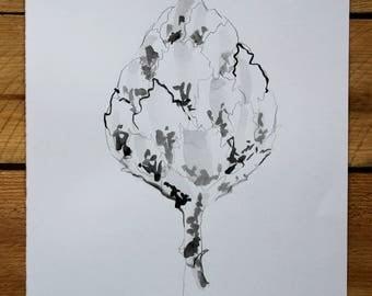 "Original drawing ""Homage to Blossfeldt VIII"" / ink and graphite"