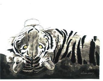 Tiger lying back