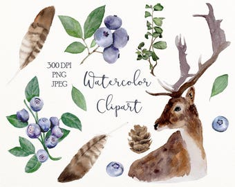 Watercolor woodland clip art - digital clipart - watercolor digital download - watercolor graphics - forest png, animal, herb, feather #el1