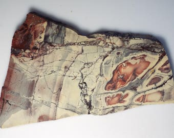 PORCELAIN, SCI-FI, Exotica jasper rough lapidary slab