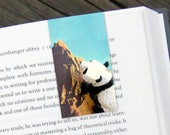Panda Explore Magnetic Bookmark