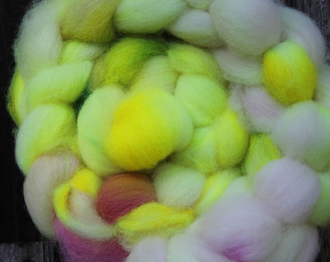 Kettle Dyed Cheviot Wool Top.  Easy to spin. 4oz  Braid. Spin. Felt. Roving. C202