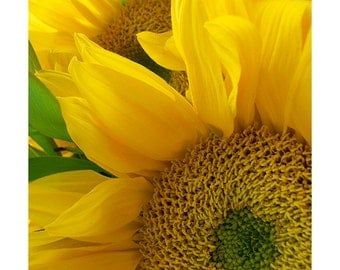 Yellow Sunflower Art,  Sunflower Photo, Neon Sunflower Art Print, Flower Wall Decor, Nursery Decor, Flower Art