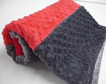 Red and Gray Double Sided Minky Blanket 24 x 36 READY TO SHIP