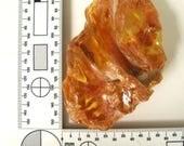 "Huge Natural Colombian Amber Copal large specimen Super Interesting shape Chunk of amber . 60 x 90 mm. 2 1/2 x 3 1/2"". CAC004"