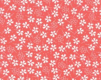 Lulu Lane (29023 15) Coral Pansies by Corey Yoder