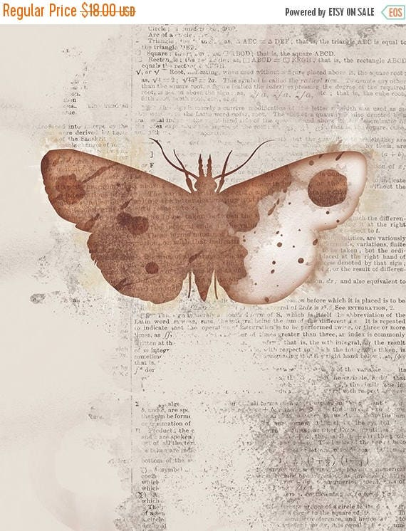 Mothers Day Sale Moth Art - Leopold - Butterflies and Moths Series - 8x10 - rustic Collage Art