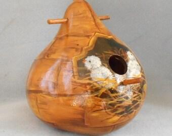 Baby Birds Hatching Bird House Gourd